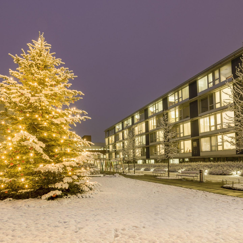 Weihnachten beim Spital Bülach